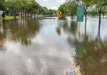 Potential Changes in the Flood Insurance Program